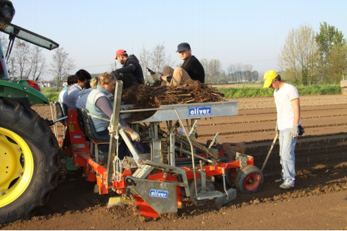 Oliver Agro Machinery - Horticultural Equipment